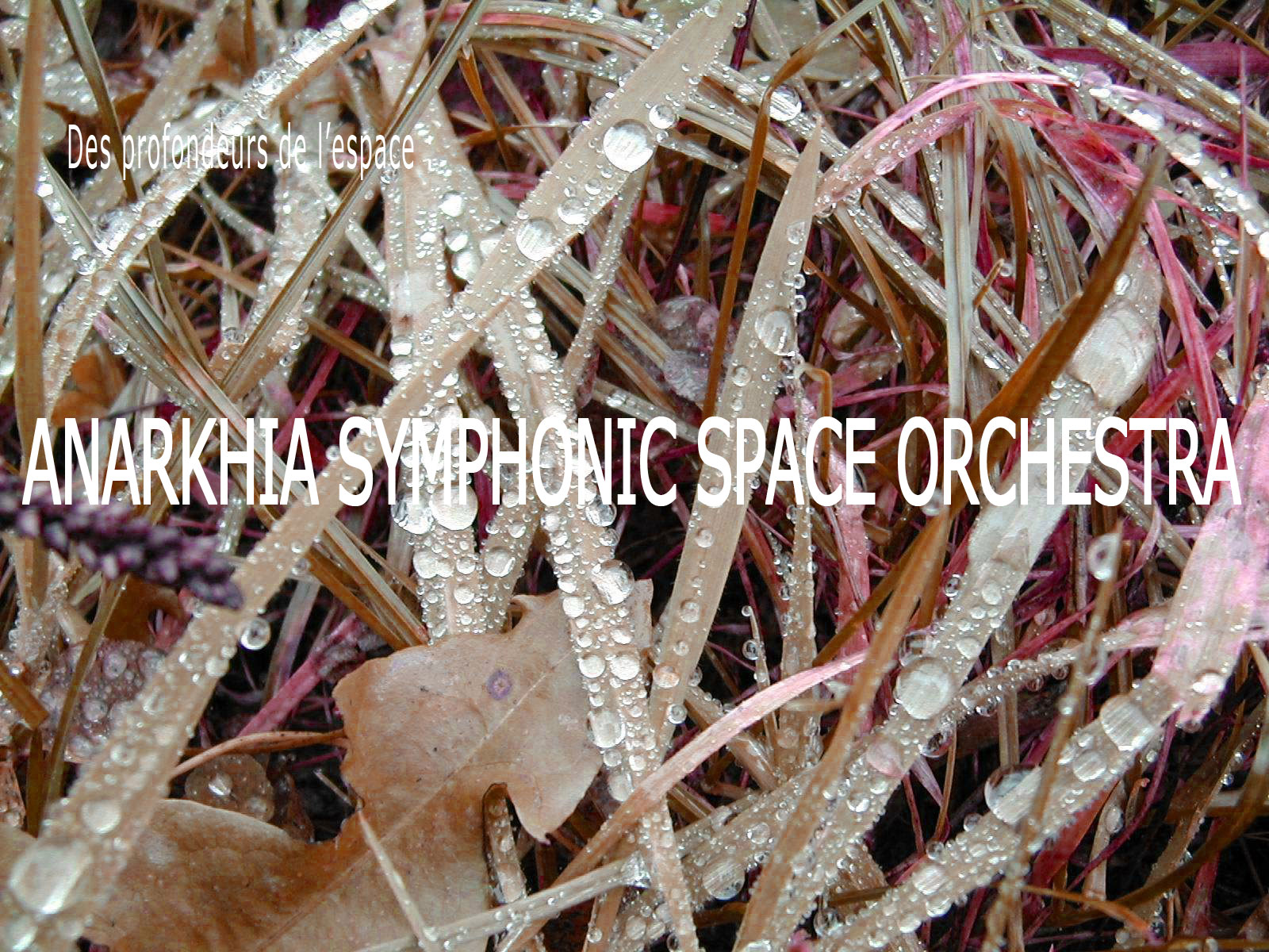 Anarkhia symphonic space orchestra = POSTER